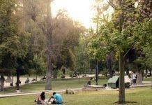 Guía Parque Forestal