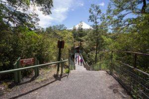 Sendero del Parque Philippi