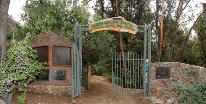 Parque Nacional Quebrada de Macul